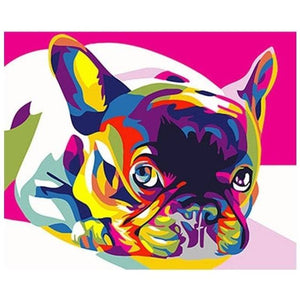 Rainbow Bulldog - Number Painting (NIEUW) - Science Factory
