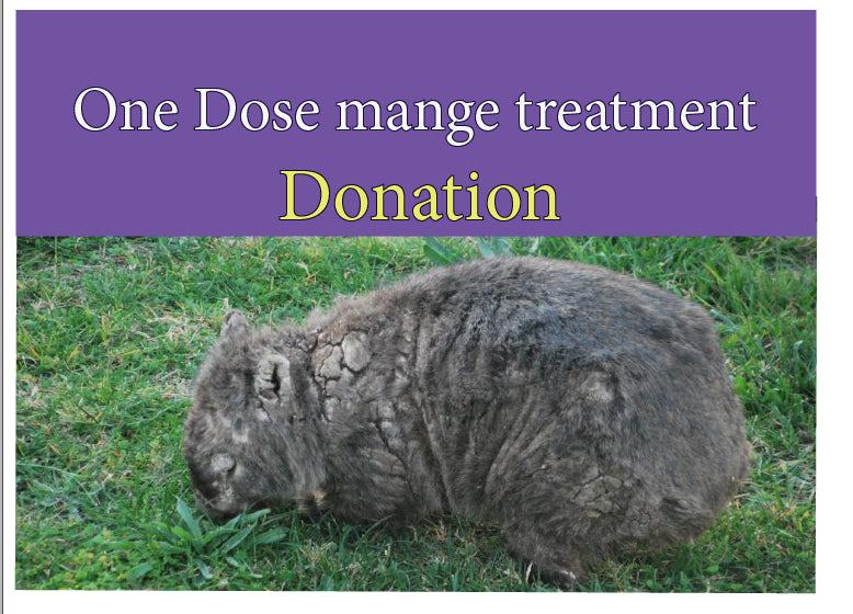 GIFT OF Treat a mangy wombat kit  ONE DOSE TREATMENT  We can email a printable PDF you can give as a gift, or  post with card.