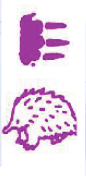 Echidna double-sided self-inking stamp Purple Ink