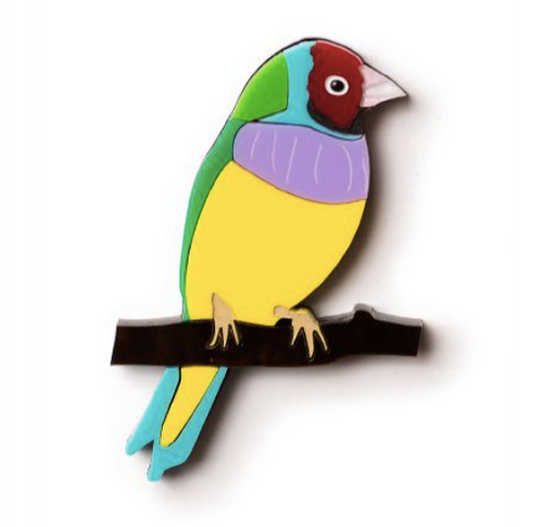 Gouldian Finch Brooch By Martini Slippers + rocklily gift earrings