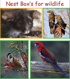 Gift Nest Box for wildlife, Birds and mammals at Rocklily.