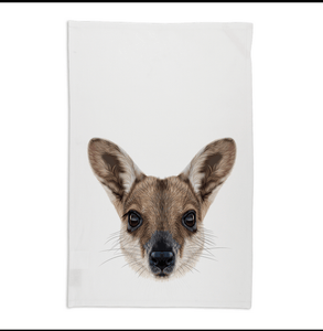 Wallaby Tea towel rocklilywombats