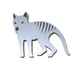 Tasmanian Tiger Pin – Allegria Designs
