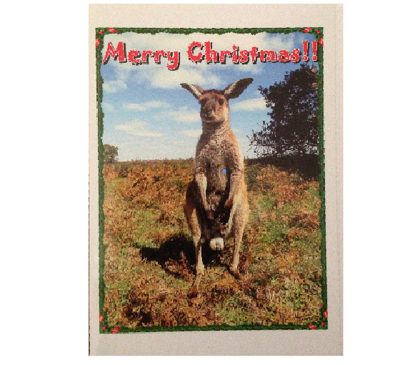 Merry Bloody Xmas Says Mr kangaroo. No M1