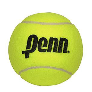 Penn 4 inch Mini Jumbo Tennis Ball - RacquetGuys