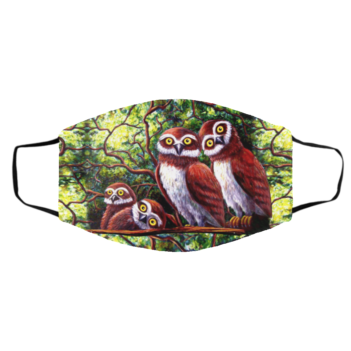 Native Owl Cloth Face Masks
