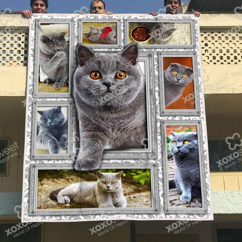 British Shorthair Blanket