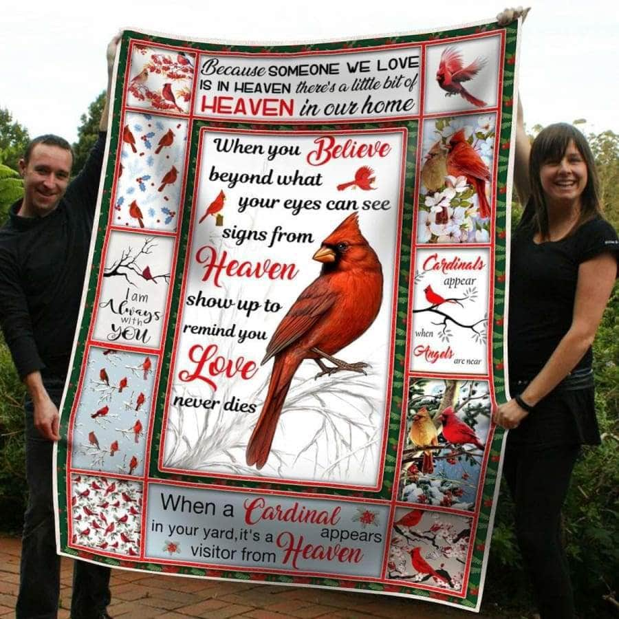 Cardinals Appear Blanket