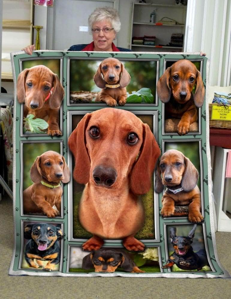 Cute Dachshund Blanket