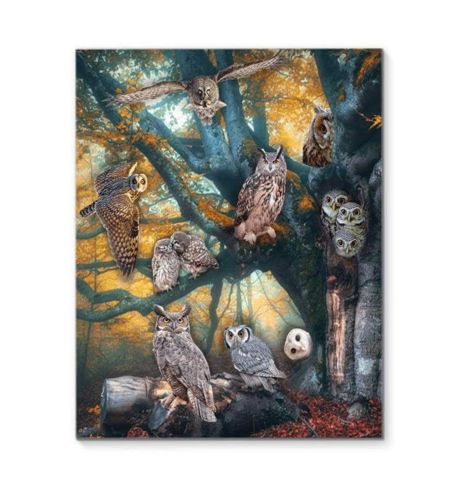 Owl Canvas Zoom