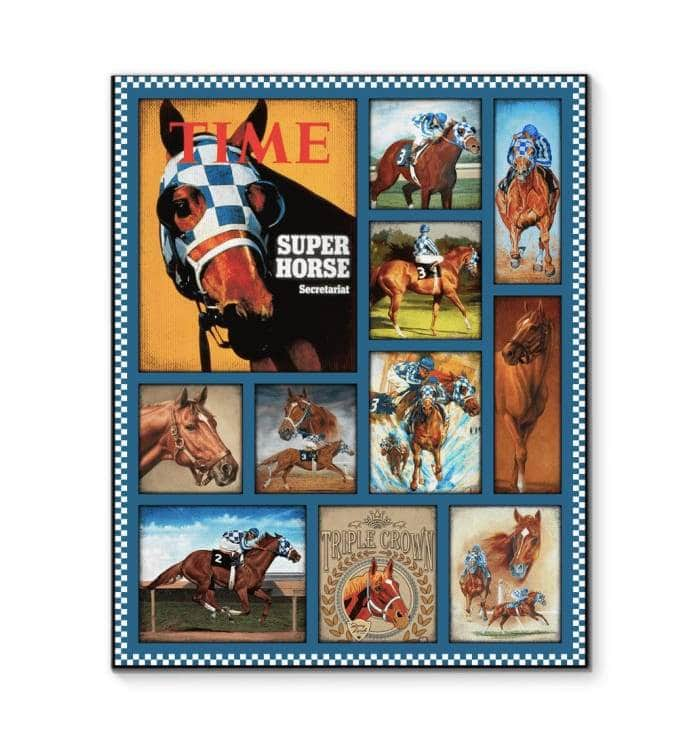 Secretariat Canvas 2