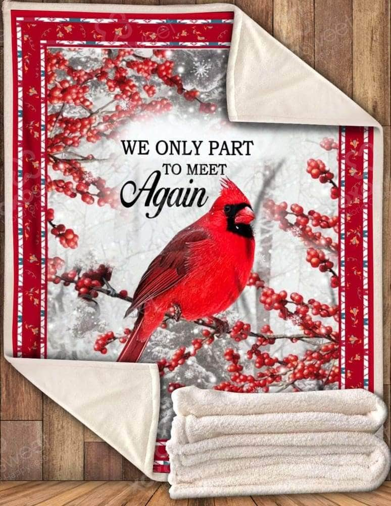 We Only Part - Cardinal Blanket