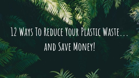 12 Simple Things You Can Do To Reduce Plastic Waste & Save Money