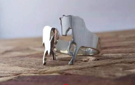 Shape horse ring