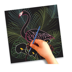 SCRATCH ART BIRDS