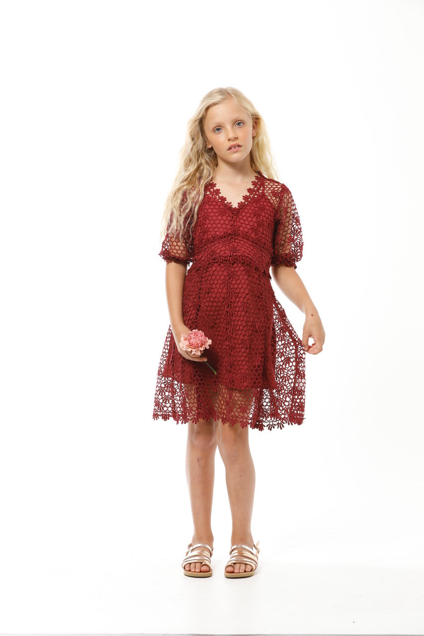 Chloe Lace Dress by Marlo