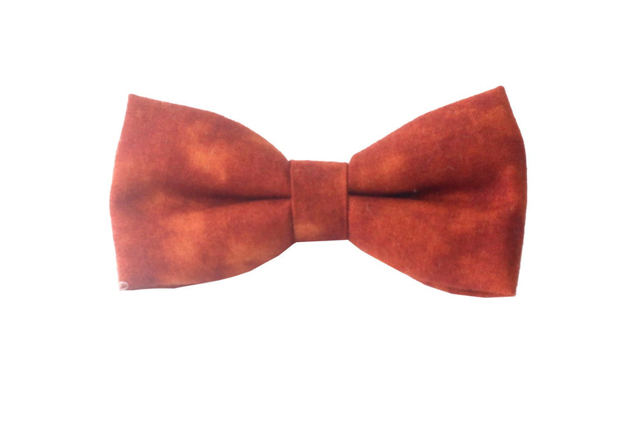 Bowtie by Arbii - Flying Colors Baby