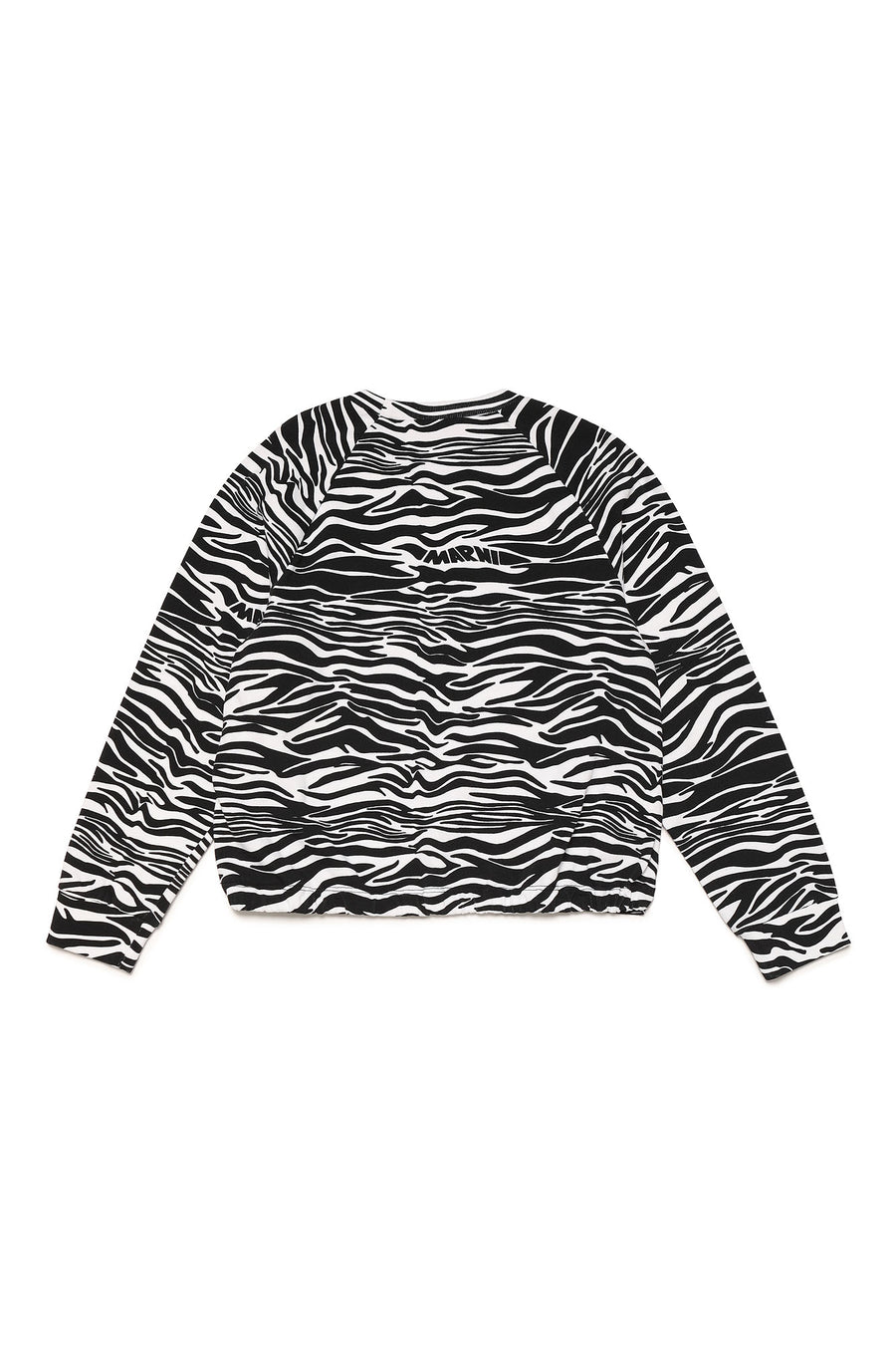 Zebra Sweatshirt by Marni