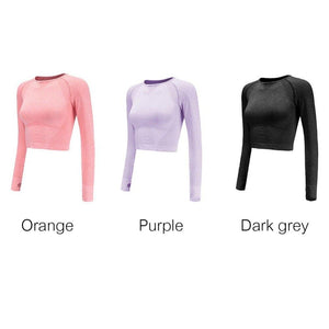Seamless Long Sleeve Crop Top Yoga Shirts