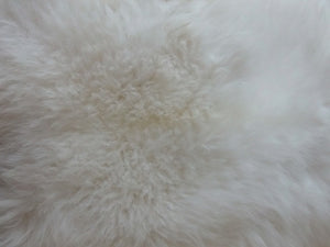 White Sheepskin Cushion 35x35 cm Single and Double Sided - Barnscroft.com
