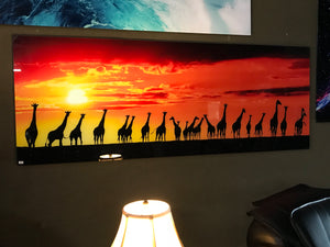 4D Art on Glass Giraffes in Sunset