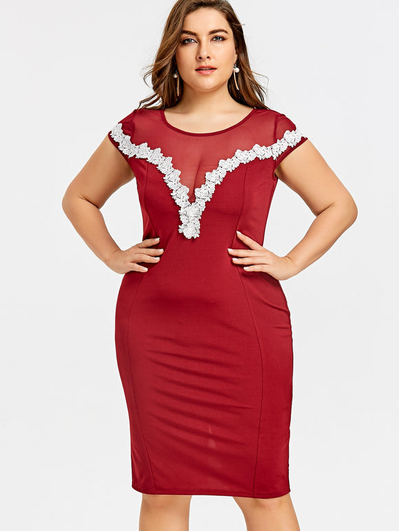 Plus Size Sheer Lace Appliqued Pencil Dress