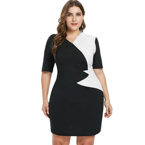 Plus Size Casual Two Tone Dress