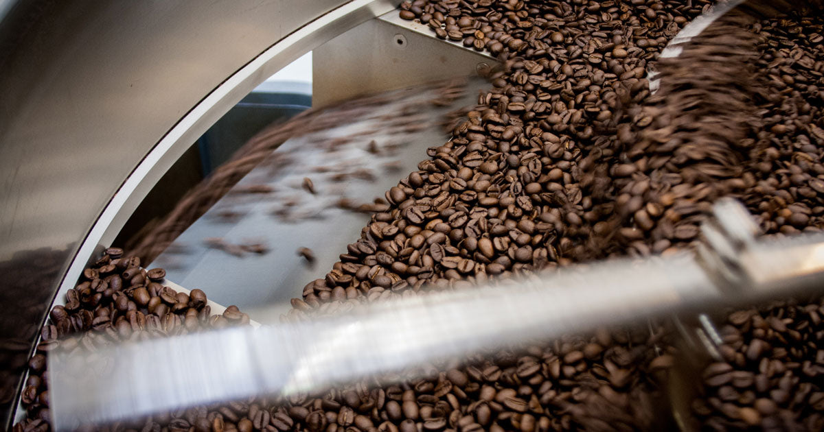 roasted whole bean coffee dumping out of a cooling tray