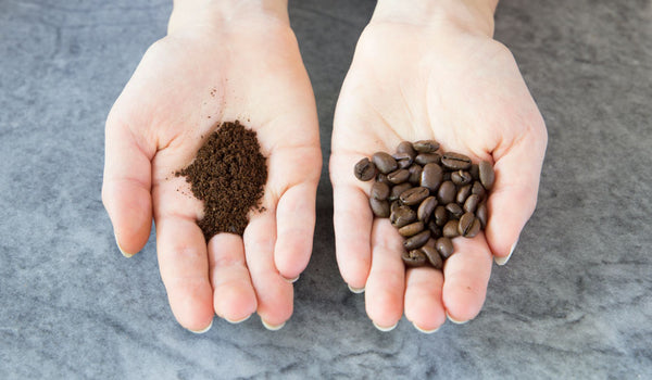 two hands next to each other, one holding ground coffee, and the other holding whole bean coffee