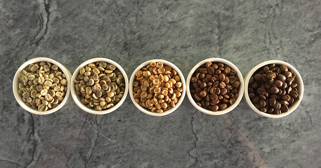 coffee at different stages of roast development