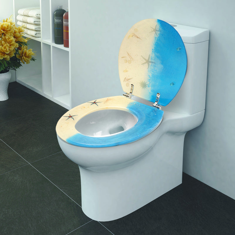 Beautiful-Toilet-Seat-Lid-Blue-Cover-for-your-Bathroom