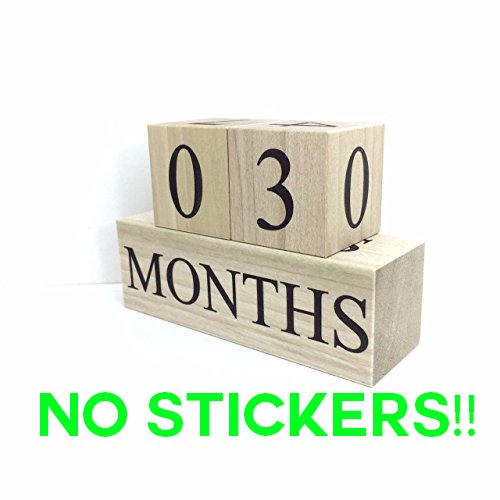 Age Blocks- Natural Wood, Black Lettering Baby Age Blocks, Milestone Blocks, Photo
