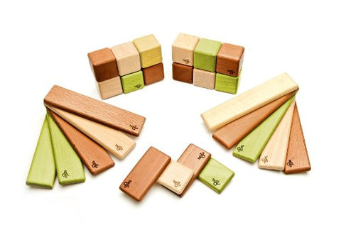 26 Piece Tegu Discovery Magnetic Wooden Block