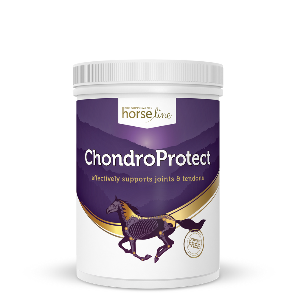 HorseLine ChondroProtect