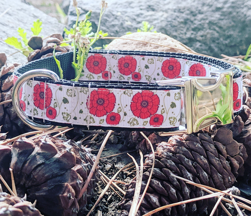 Red Poppy Dog Collar