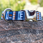 Burnt Orange and Blue Alligators Dog Collar