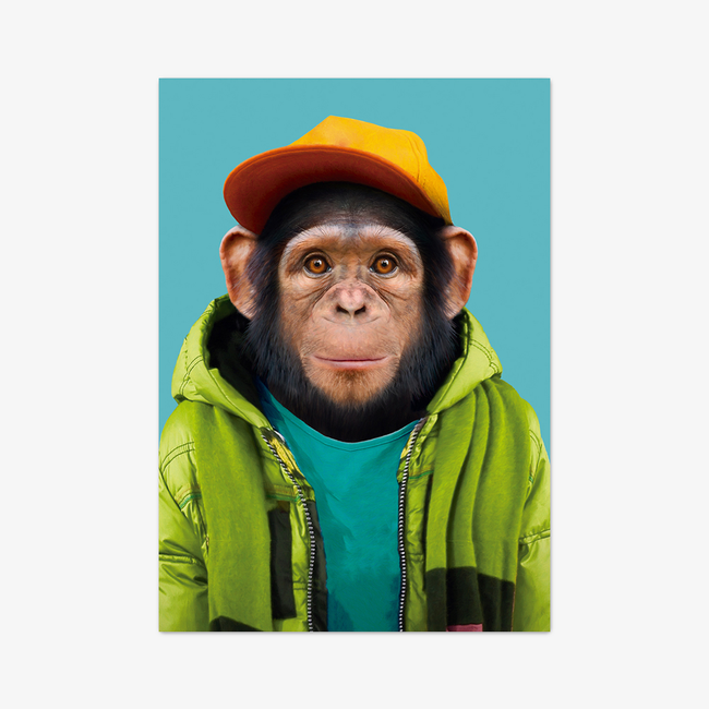 "Postkarte ""Common Chimpanzee"""