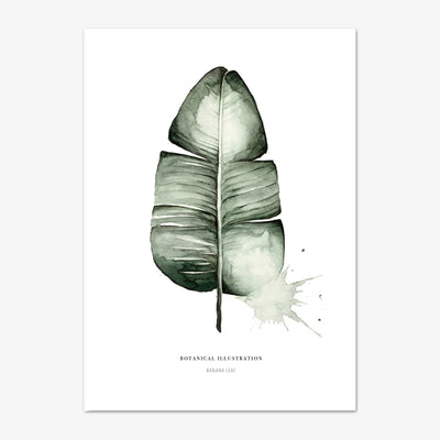 "Art Print ""Banana Leaf"""