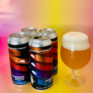 4- Pack Technodrome- Tart Ale with Guava and Galaxy