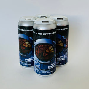 4- Pack Hallo Spaceboy Tart Pale Ale