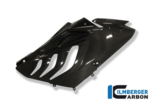 Ilmberger S1000RR (10-11) CF Fairing Panel Right