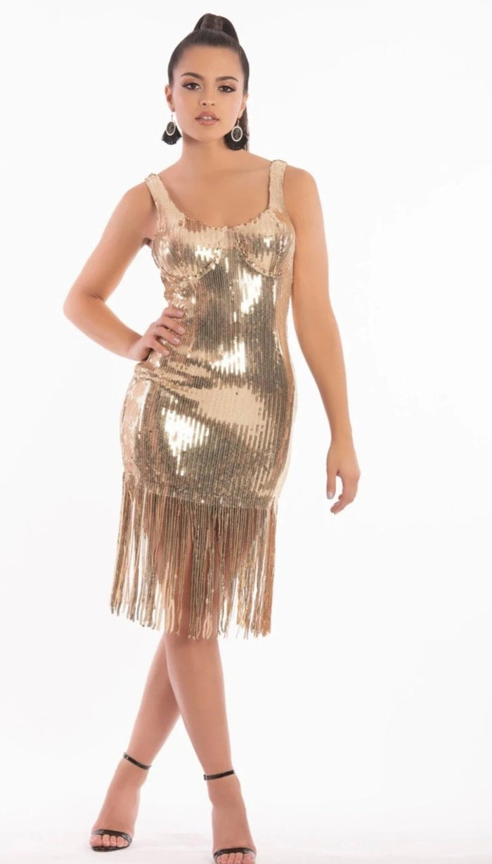 'TIANNA' Sequin Fringe Dress - GLAMBAE FASHION