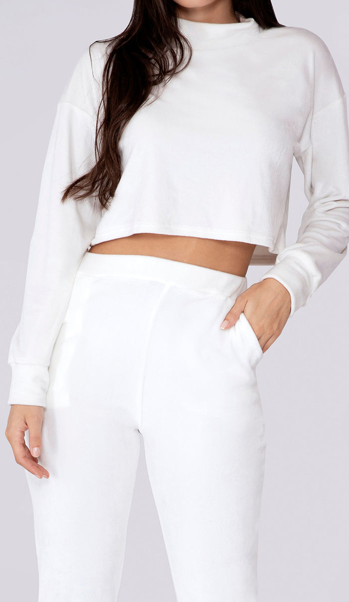 REMI Velour High Neck Long Sleeve Crop Top