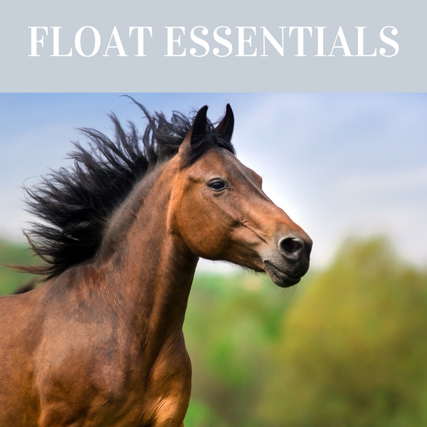 Float Essentials