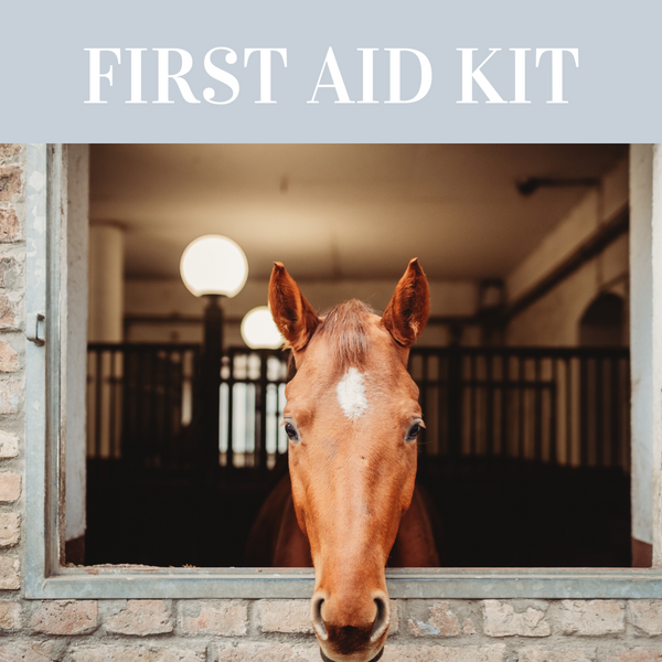 Equine First Aid Kit Essentials
