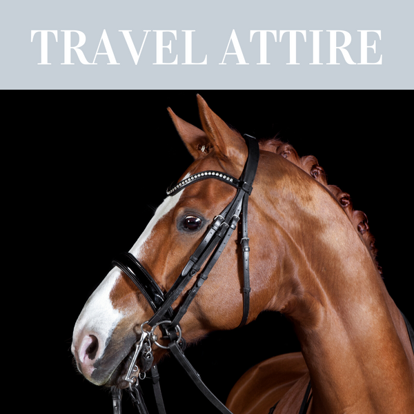 Travelling attire for horses