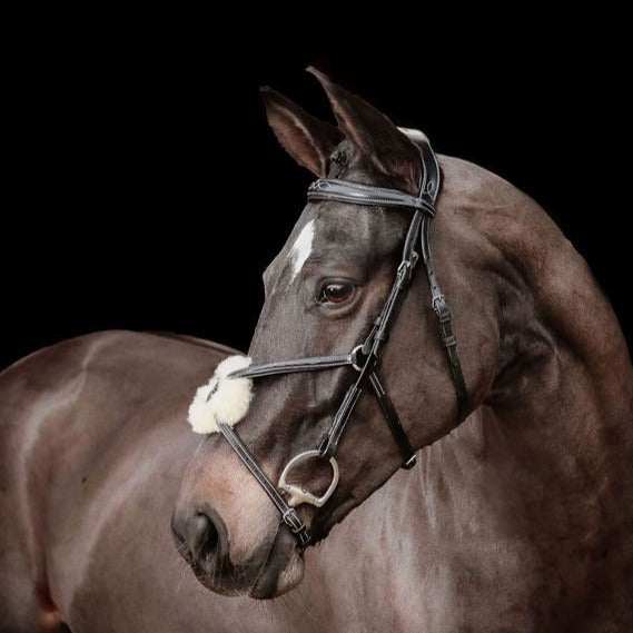 'Ava' Italian leather grackle bridle - black & brown