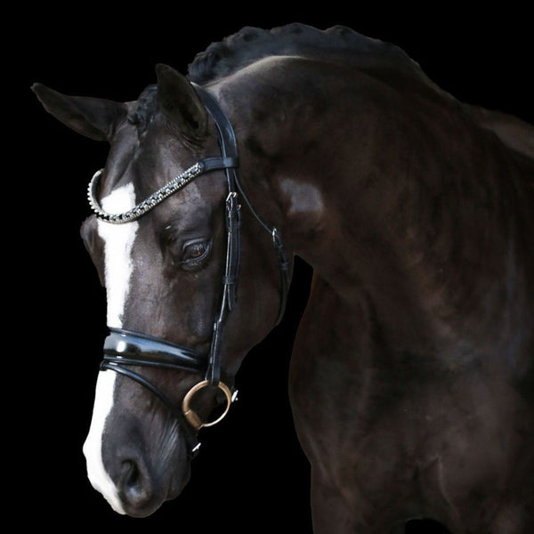 'Audrey' black Italian leather bridle
