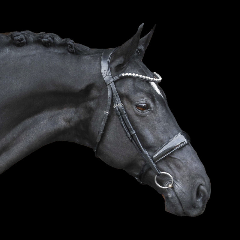 black Italian leather bridle