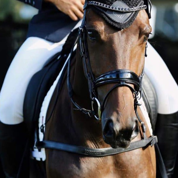 'Alicia' dressage breastplate - black - Lumiere Equestrian